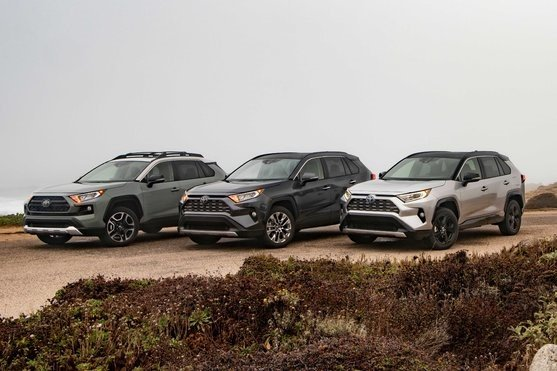 Toyota rav4 2019 two color combine