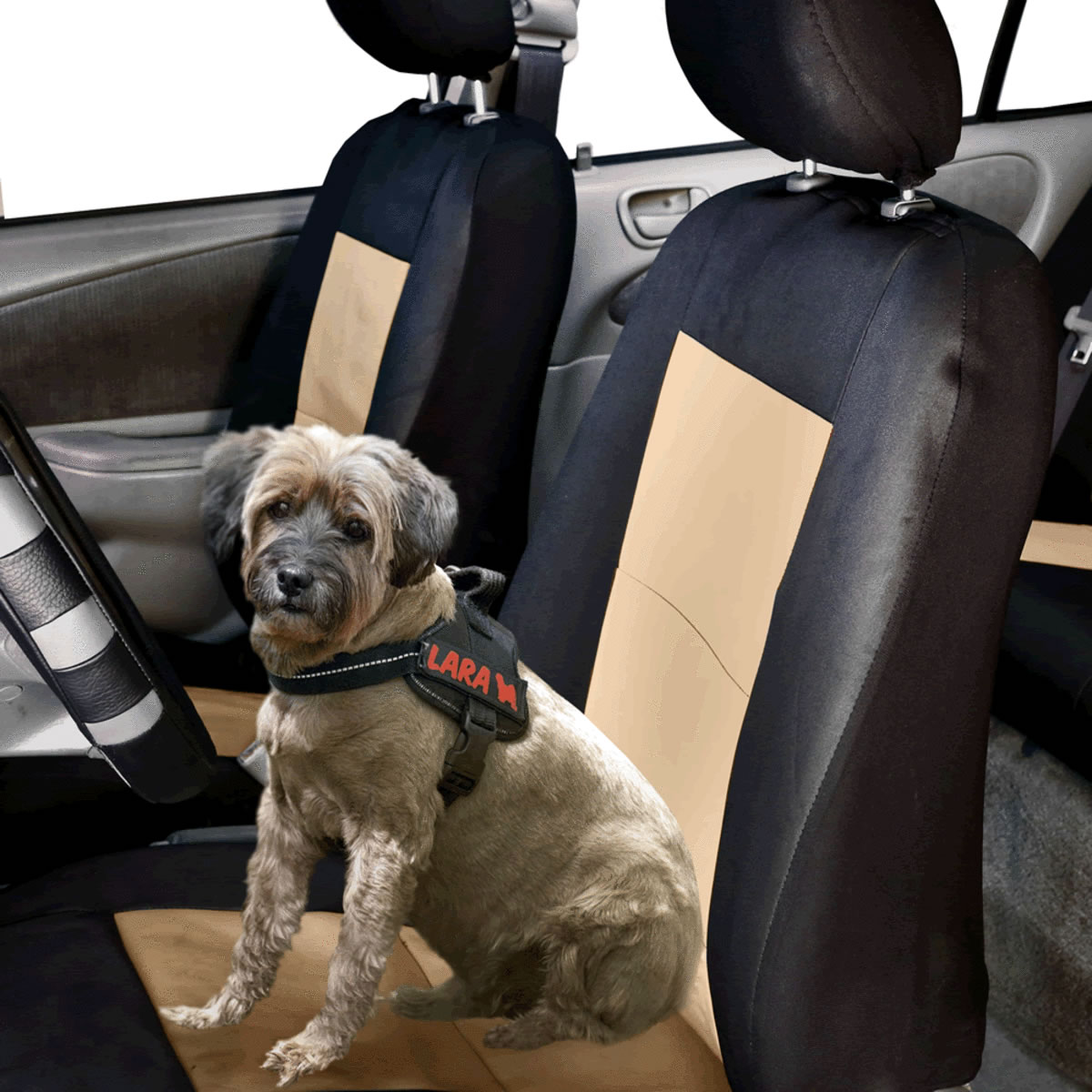 FB085BEIGE114-PET seat cover 1