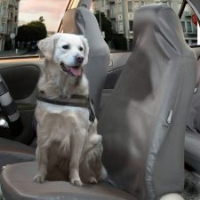 FB113GRAY114-PET seat cover 1