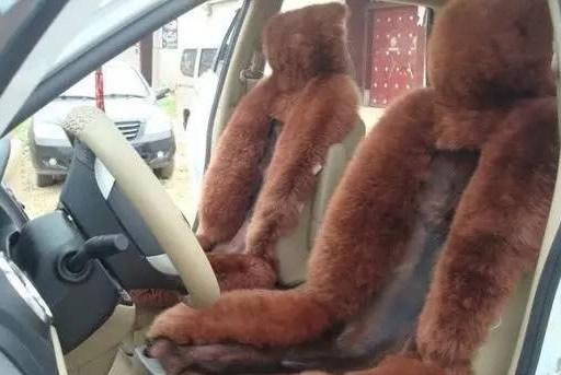 Siberia seat covers