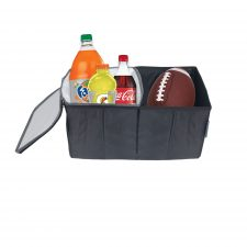 Car Cooler and Storage Bin