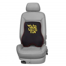 Back Cushion for Car